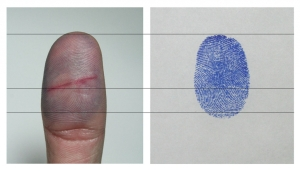 Maja Rozman - Fingerprint (2010) (c) courtesy the artist
