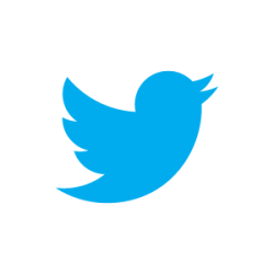 twitter-bird-blue-on-white