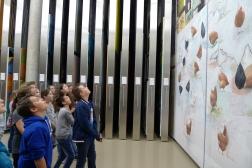 Im Depot werden Werke im Original gesichtet. (c) Essl Museum